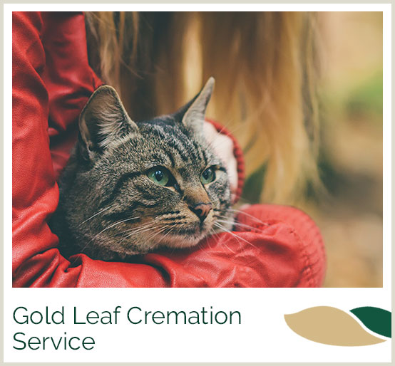 Gold Leaf Cremation Services