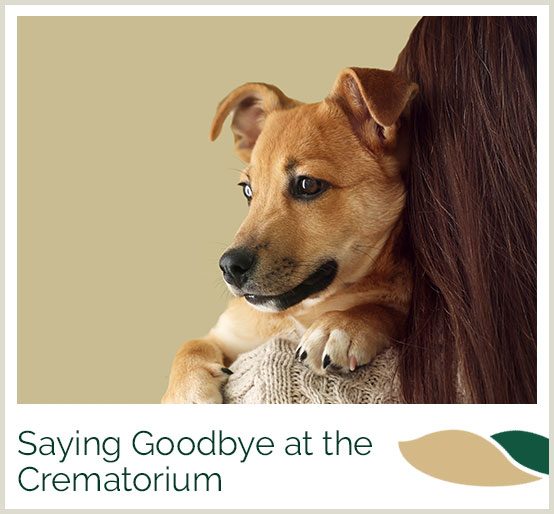 Saying goodbye at the crematorium